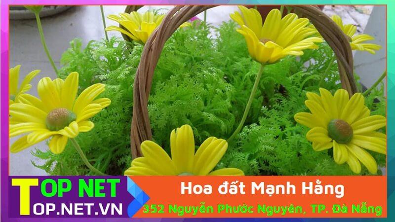 Hoa đất Mạnh Hằng - Cửa hàng bán hoa giả Đà Nẵng